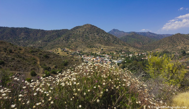 Thorn flowers and the valley of the village of Arakapas