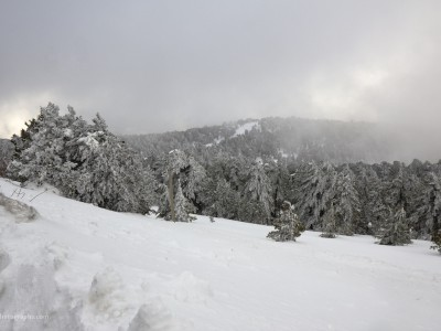Winter 2012 in Troodos 1
