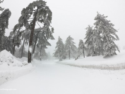 Winter 2012 in Troodos 4