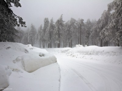 Winter 2012 in Troodos 6